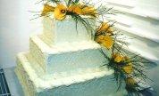 Cake 24